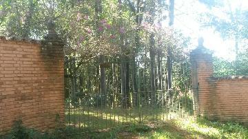 Campo Limpo Paulista Estancia Figueira Branca Rural Venda R$730.000,00 1 Dormitorio 1 Vaga Area do terreno 13483.00m2 Area construida 300.00m2