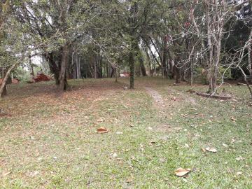 Campo Limpo Paulista Estancia Figueira Branca Rural Venda R$260.000,00  Area do terreno 2640.00m2 Area construida 2640.00m2