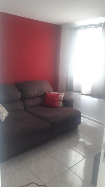 Alugar Apartamento / Padrão em Campo Limpo Paulista apenas R$ 900,00 - Foto 1